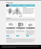 Website Template Entomological Collection — Stock Vector