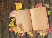 Stará kniha — Stock fotografie
