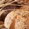 Different types of bread — Foto Stock