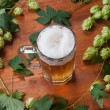 Beer and hop — Lizenzfreies Foto