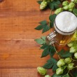 Beer and hop — Stockfoto #14436353
