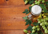 Beer and hop — Stock Photo