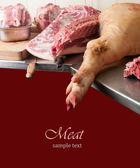 Olika bitar av kött — Stockfoto