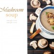 Soup of mushrooms — Stock Photo