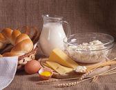 Melk en zuivelproducten — Stockfoto