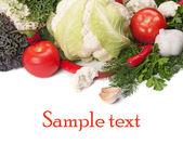 Vegetable — Stock Photo