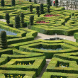 Garden from Chateau de Villandry, France — Stock Photo #1437369