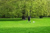 женщина, идя своей собакой — Стоковое фото