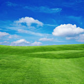 Grass field with cloudy sky — Stok fotoğraf