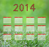 Yearly calendar 2014 in green — Stock Photo