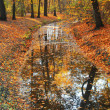 Autumn trees reflecting in river — Stock Photo