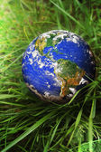 Earth on the green grass — Stock Photo