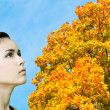 Foto Stock: Beautiful womlooking to vivid autumnal leafage over blue sky in sunny perfect day
