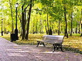 Beautiful colorful autumn park in sunny day — Foto de Stock