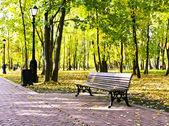 Parque otoño colorido hermoso día soleado — Foto de Stock