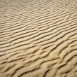 Puckered texture of sand beach - Stock Photo