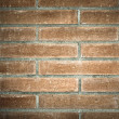 Grunge brick-wall texture — Stock Photo #25214483