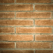 Grunge brick-wall texture — Stock Photo #25214571