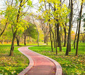 Curve road in rural autumn country — Stock Photo