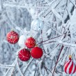 Beautiful Christmas red balls over snowy branches — Stock Photo #25247043