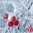 Beautiful Christmas red balls over snowy branches — Stock Photo
