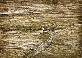 Plano de fundo de um antigo quarto de madeira natural com textura desarrumado e sujo dentro interior negligenciado e deserta — Foto Stock