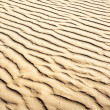 Puckered texture of sand beach — Stock Photo #25425893