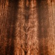 Closeup of dark wood texture with natural pattern — Foto Stock