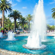 Beautiful fountain in summer tropical park — Stock Photo