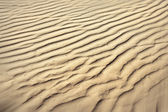 Puckered texture of sand beach — Stock Photo
