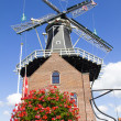 Windmill in Haarlem, Holland — Stock Photo