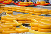 Cheeses in Alkmaar, The Netherlands — Stock Photo