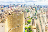 View of Sao Paulo and the famous Copan building. — Stock Photo