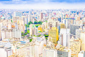 View of Sao Paulo, Brazil — Stock Photo