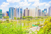 View of Sao Paulo and the river, Brazil — Stock Photo