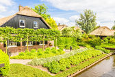 Typical Dutch houses and gardens in Giethoorn, The Netherlands — Stock Photo