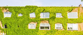 Ecological building with the wall full of plants — Stock Photo