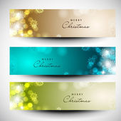 Merry Christmas website banner set decorated with snowflakes and — ストックベクタ