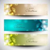 Merry christmas website banner set ingericht met sneeuwvlokken en — Stockvector