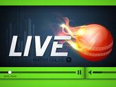 Illustration of Cricket match live telecast promotion on interne — Stock Vector