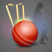 Abstract sports concept with cricket ball on wicket stumps. — Stock Vector