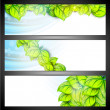 Nature and Eco website header or banner set. — Stock Vector