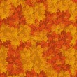 Autumn leaves seamless background. - Stock Vector