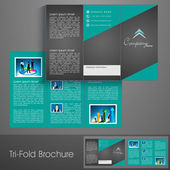 Professional business three fold flyer template, corporate brochure or cover design, can be use for publishing, print and presentation. — Stock Vector