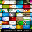 Professional Business Card Set. — Imagen vectorial