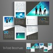 Stock Vector: Professional business three fold flyer template, corporate broch
