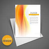 Professional business flyer template, corporate brochure or cove — Stock Vector