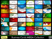 Professional Business Card Set. — Stock Vector
