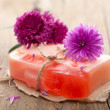 Handmade herbal soap — Stock Photo