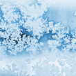 Stock Photo: Winter rime background